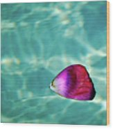 Rose Petal Floating On Water Wood Print by Gerard Plauche