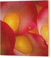 Rose Pod Wood Print