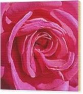 Rose Rose Wood Print