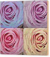 Rose Spiral Colorful Mix Wood Print