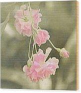 Rose Vine Wood Print