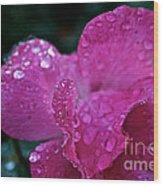 Rose Water Beads Wood Print