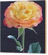 Rose3 Wood Print