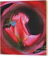 Rosebud Energies Wood Print