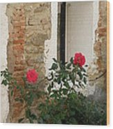 Roses And Antiquity  Wood Print