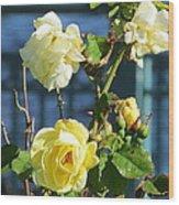 Roses At The Shore Wood Print