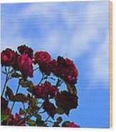 Roses In The Sky Wood Print
