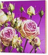 Roses (rosa Sp.) Wood Print