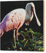Rosette Spoonbill Shimmering Wood Print
