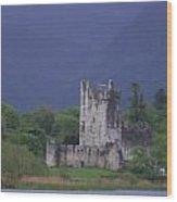 Ross Castle Wood Print