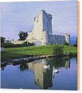 Ross Castle, Lough Leane, Killarney Wood Print by The Irish Image Collection