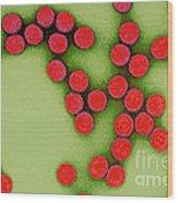 Rotavirus Wood Print