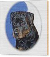 Rottweiler 1437 Wood Print