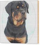 Rottweiler 425 Wood Print