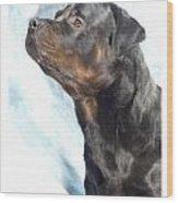 Rottweiler 923 Wood Print