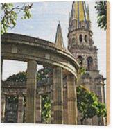 Rotunda Of Illustrious Jalisciences And Guadalajara Cathedral Wood Print