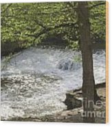 Rouge River At Fair Lane Wood Print