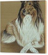 Rough Collie Wood Print