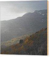 Rough Ridge Trail Wood Print