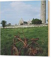 Round Tower, Kilmacduagh Near Gort, Co Wood Print