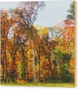 Row Of Autumn Trees Wood Print