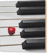 Row Of Piano Keys Wood Print by Garry Gay