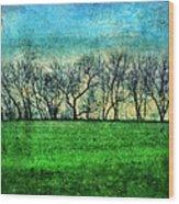 Row Of Trees Wood Print