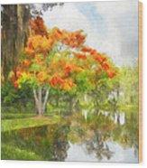 Royal Poinciana Lake Wood Print