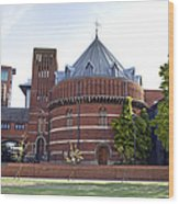 Rst And Swan Theatre Wood Print