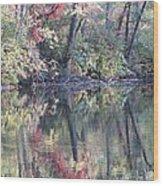 Ruby Of Fall Wood Print