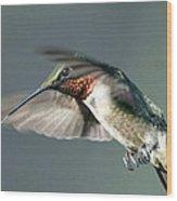 Ruby-throated Hummingbird - Hover Wood Print