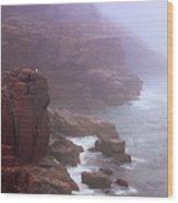 Rugged Seacoast In Mist Wood Print