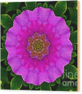 Rugosa Kaleidoscope Wood Print