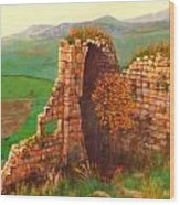 Ruined Castle View Wood Print