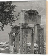 Ruins Of Hierapolis Wood Print by Waldek Dabrowski