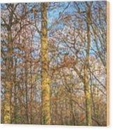 Ruislip Lido  Wood Print