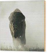 Running Bison Kicking Up Dust Wood Print