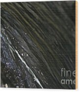 Running Ribbon Water Wood Print