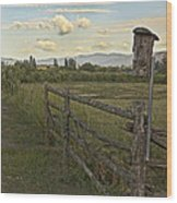 Rural Birdhouse On Fence Wood Print