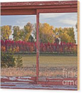 Rural Country Autumn Scenic Window View Wood Print