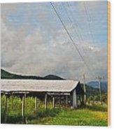 Rural Highways And Biways Wood Print