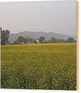Rural Landscape With A Field Of Mustard Wood Print