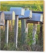 Rural Mail Boxes In Color Wood Print