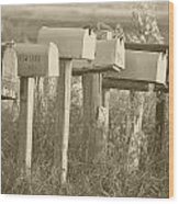 Rural Mail Boxes In Sepia Wood Print