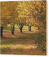 Rural Scene In Autumn Wood Print