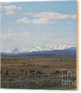 Rural Wyoming - On The Way To Jackson Hole Wood Print