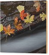 Rushing Autumn Wood Print by Jim Speth