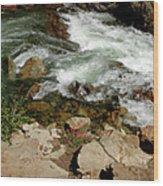Rushing Water Glen Alpine Creek  Wood Print
