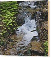 Rushing Water On Mt Spokane Wood Print