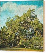 Ruskin Oak Wood Print